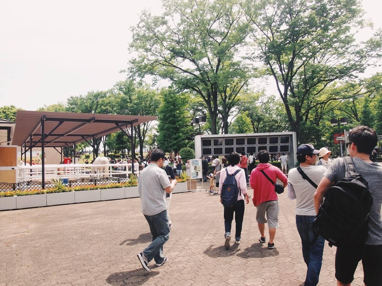 東京競馬場-1