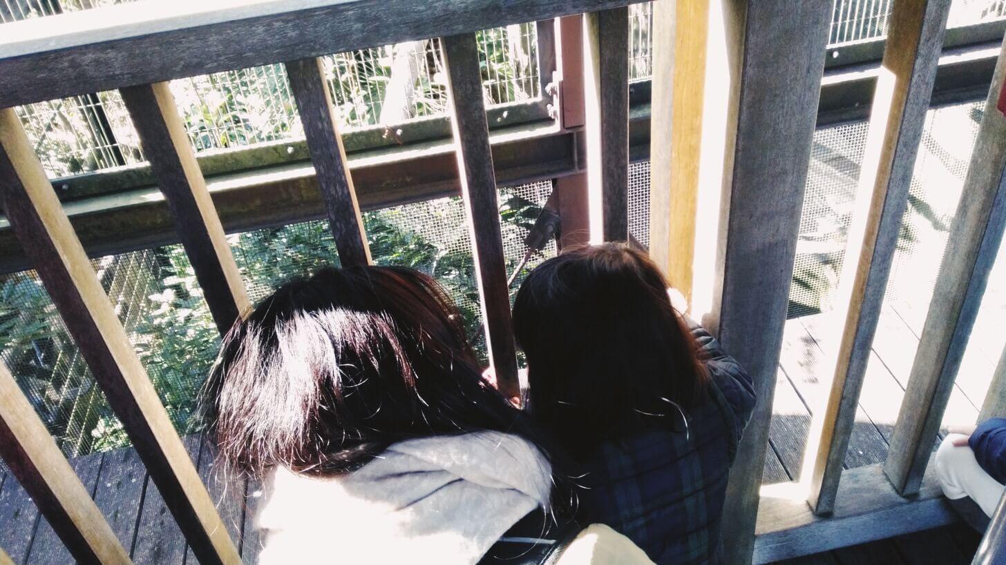 よこはま動物園ズーラシア-4